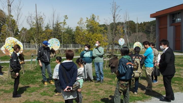 猛禽類の展示(流山市生涯学習センター)01.JPG